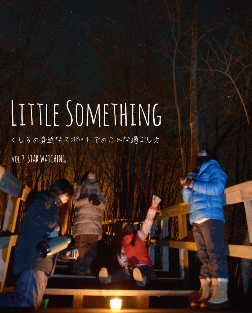 littelsomething03-1